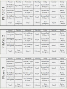 P90x Ab Ripper Workout Sheets Fresh P90x Worksheets