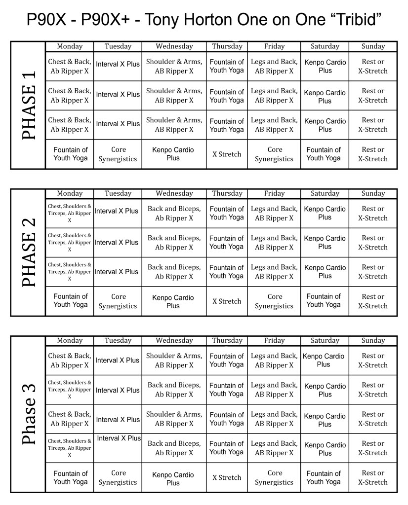12 Best Images Of Free Printable Worksheets P90X P90X
