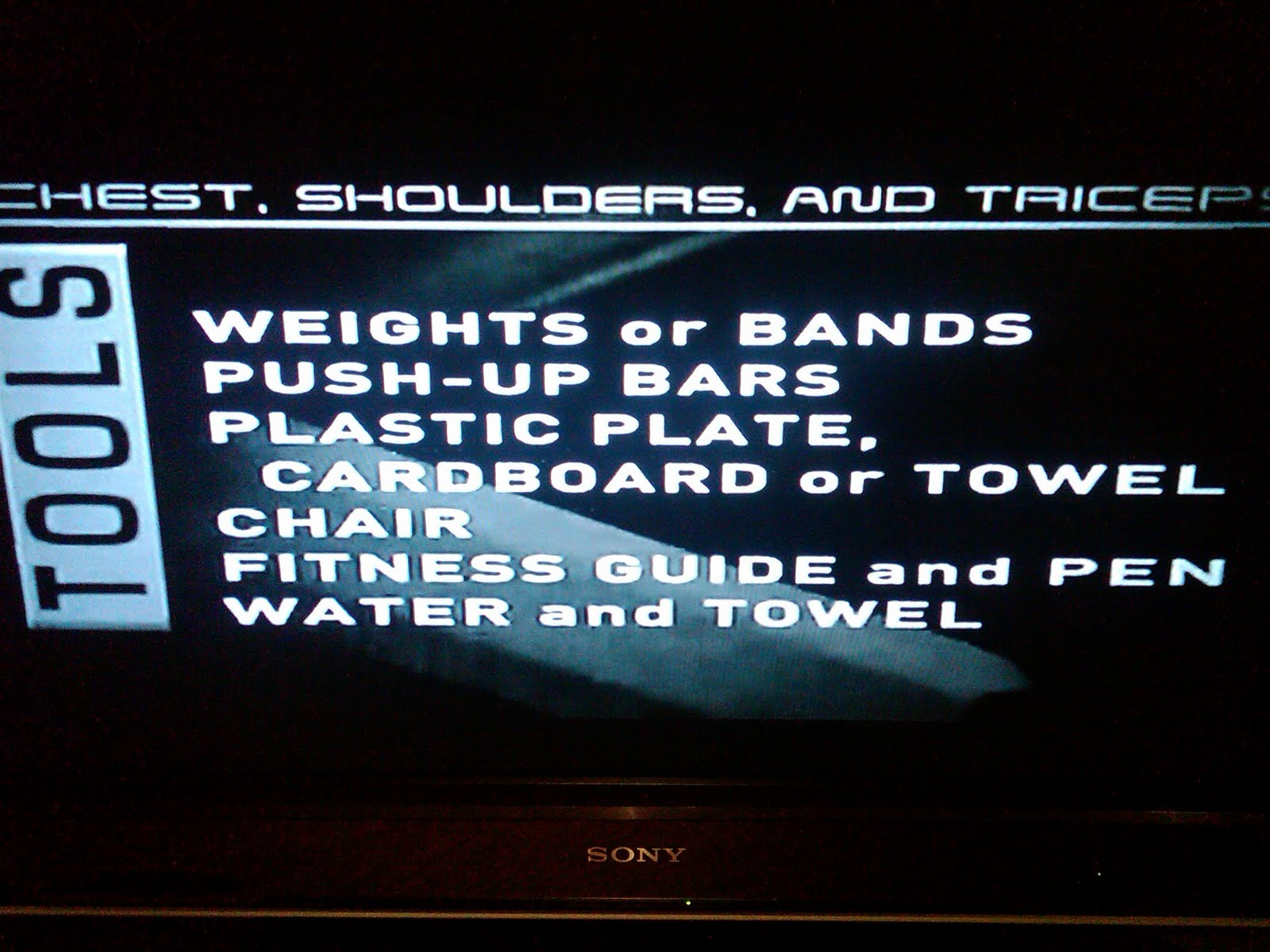 P90X Reviews Chest Shoulders And Triceps X MIKE