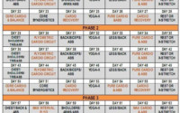 P90X Insanity Hybrid Schedule Workout Calendar Insanity