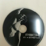 P90X X Stretch Replacement Disc 7 DVD Extreme Home Fitness