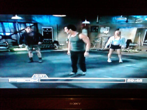 Shoulders And Arms Review Day 3 Insanity P90X Hybrid