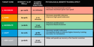 The Science Of P90X Heart Rate Zones And Intensity