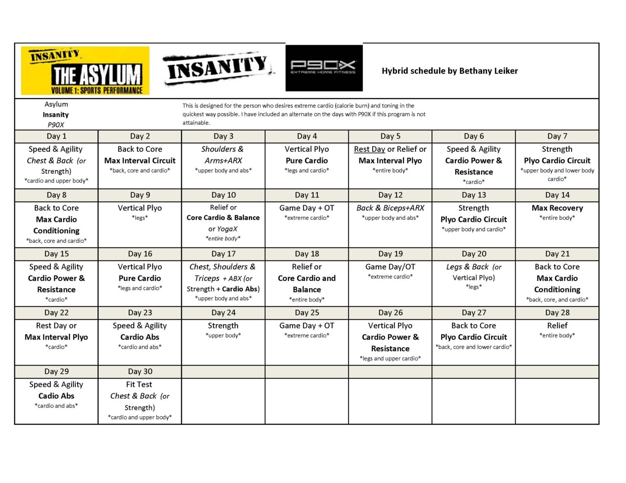 Here Is My Asylum Insanity P90X Hybrid Schedule