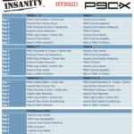 Insanity P90X Hybrid Insanity Workout Schedule P90x Workout