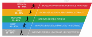 Obstacle Course Training Fundamentals Of Heart Rate Training