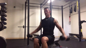 P90x Shoulders Biceps And Triceps Workout Blog Dandk